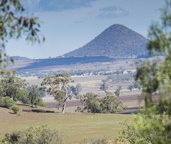 Rural farming scene, NSW